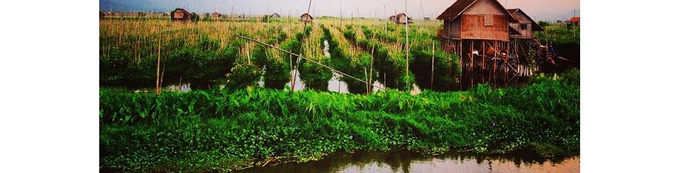 Lac Inle Birmanie